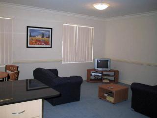 3 bedroom Apartment with Internet Access in North Parramatta - North Parramatta vacation rentals