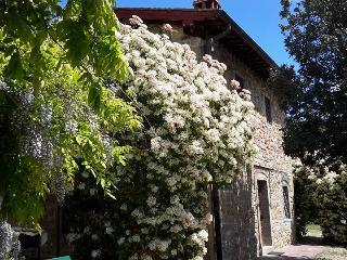 Grace Hayloft - Il Fienile di Grazia - Castelfranco di Sopra vacation rentals
