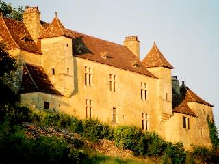 Perfect Chateau with Balcony and Grill - Mauzens-et-Miremont vacation rentals
