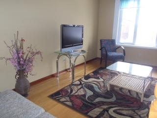 3 bedrooms private house 59 festival drive Toronto - Richmond Hill vacation rentals