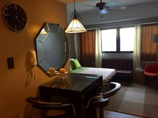 Suburban Studio in Metro Manila East - Cainta vacation rentals