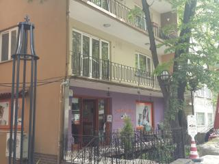 MIA Hotel Apartment - Osmangazi vacation rentals