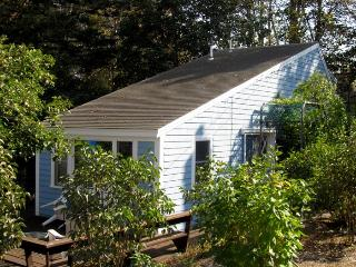 Convenient 2 bedroom House in Wellfleet - Wellfleet vacation rentals