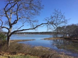 Private Home with Views of the Marsh! - South Wellfleet vacation rentals