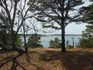5 Bedroom Victorian Summer Cottage - Wellfleet vacation rentals