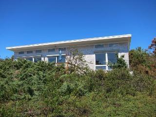 Lt. Island Home with Salt Marsh Views - Wellfleet vacation rentals