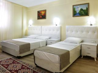 Sultanahmet,Bedspacer Accommodation - Istanbul vacation rentals