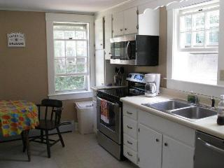 Updated Antique in Beautiful Orleans! - Orleans vacation rentals