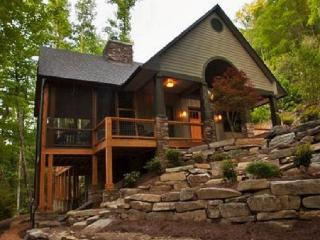 Watia Creekside - Luxury on the Creek, 2 Fireplaces, Hot Tub, Lake Access, NOC! - Bryson City vacation rentals