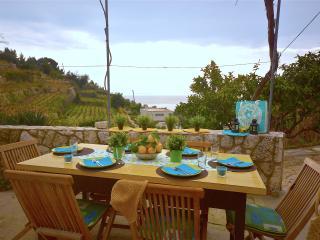 Villa Lemon Podobuce - Croatia - Podobuce vacation rentals