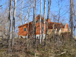 Chalet at Winghaven, Sunny New Log Home - Fletcher vacation rentals