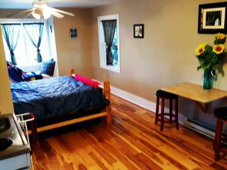 Immaculate, cozy country cottage - Windsor vacation rentals