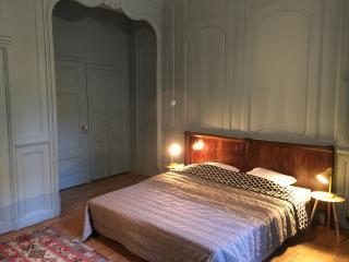 "L'annexe du 11 D ""Denfert Rochereau"", côté patio - Besançon vacation rentals"