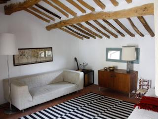 Romantic 1 bedroom Condo in Calci - Calci vacation rentals