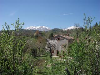 Charming 2 bedroom Apartment in Montefortino with Internet Access - Montefortino vacation rentals