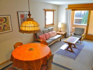 Comfortable Condo with Internet Access and Television - Sils-Maria vacation rentals