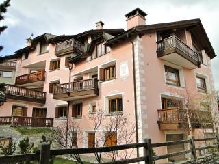 Bright 2 bedroom Condo in Silvaplana - Silvaplana vacation rentals