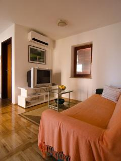 Beautiful Condo with Internet Access and A/C - Zupanja vacation rentals