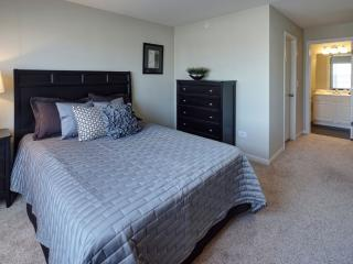 Beautiful 2 Bedroom 2 Bathroom Apartment in Naperville - Ideally Located - Naperville vacation rentals