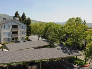 3 bedroom Apartment with Internet Access in Milpitas - Milpitas vacation rentals