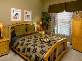 Tastefully Furnished 2 Bedroom Apartment in Fremont - Great Amenities - Fremont vacation rentals