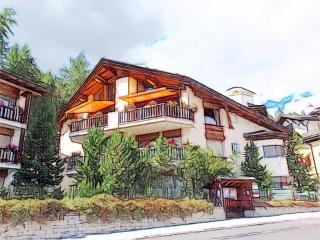 Cozy Saint Moritz Condo rental with Internet Access - Saint Moritz vacation rentals