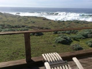 Panoramic Whitewater Oceanfront - The Sea Ranch vacation rentals