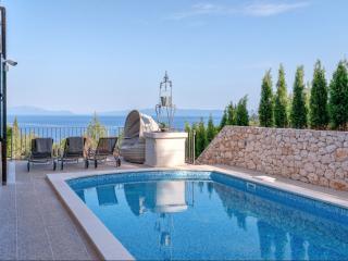 Amazing stone villa with a pool 6+2 - Zavala vacation rentals