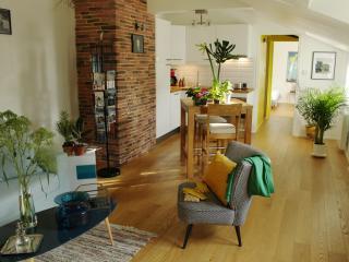 Le Canapé Bleu, appartement à Rennes - Rennes vacation rentals