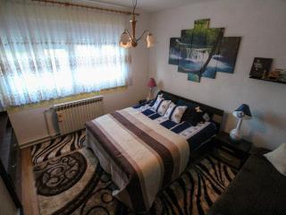 Modern apartment near Thermal springs - Topusko vacation rentals