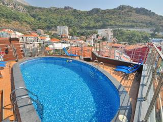 Penthouse with pool and sea view - Rafailovici vacation rentals
