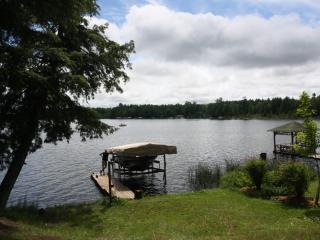 Lake front cabin, fishing, boating, relaxing - Land O  Lakes vacation rentals