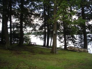 Lake front cabin, fishing, boating, relaxing - Land O  Lakes vacation rentals