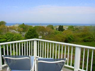 BERNJ - Menemsha Sea Coast Cottage, Gorgeous Waterviews, Walk to Menemsha - Chilmark vacation rentals