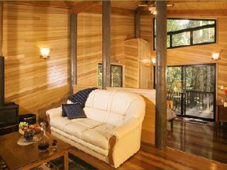 Springbrook Lyrebird Retreat  - Pitta - Springbrook vacation rentals