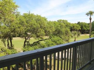 251 Driftwood Villa -Wyndham Ocean Ridge - Edisto Beach vacation rentals