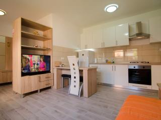 Modern Apartment in a Quiet Garden - Zupanja vacation rentals