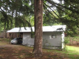 Comfortable 1 bedroom Cottage in Lake Cowichan - Lake Cowichan vacation rentals