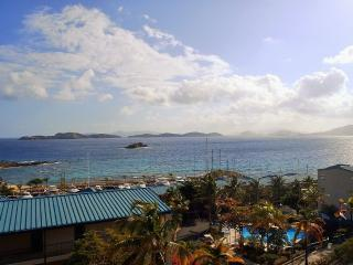 Our little piece of the Caribbean - Charlotte Amalie vacation rentals