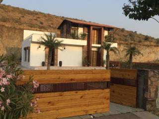 Hills and dales- luxury weekend villa - Udaipur vacation rentals