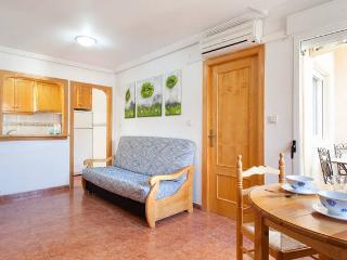 Cute apartment near the beach, Wi-Fi, A/C - Torrevieja vacation rentals