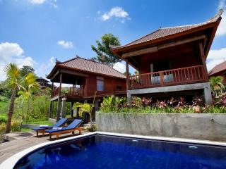 Barong Villas - Sidemen vacation rentals