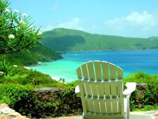 Romantic 1 bedroom Villa in Guana Island with Internet Access - Guana Island vacation rentals