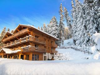 Comfortable Villa with Internet Access and Balcony - Verbier vacation rentals