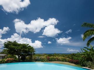 Gorgeous 4 bedroom Cotton Ground Villa with Internet Access - Cotton Ground vacation rentals