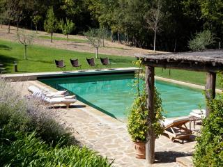 Lovely 3 bedroom Villa in Montalcino with Internet Access - Montalcino vacation rentals