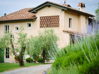 Charming Villa with Wireless Internet and Parking - Montemagno Di Camaiore vacation rentals