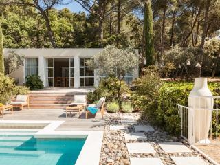 Beautiful 4 bedroom Villa in La Roque sur Pernes - La Roque sur Pernes vacation rentals