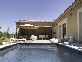 Nice Villa with Internet Access and DVD Player - La Roque sur Pernes vacation rentals