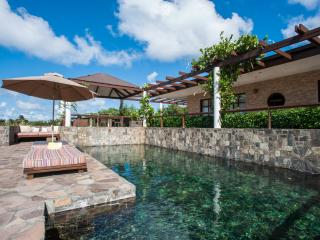 Wyler House - Mustique vacation rentals